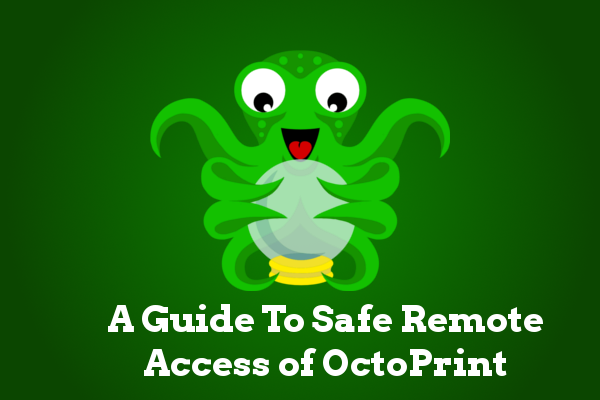 OctoPrint org - A Guide To Safe Remote Access of OctoPrint